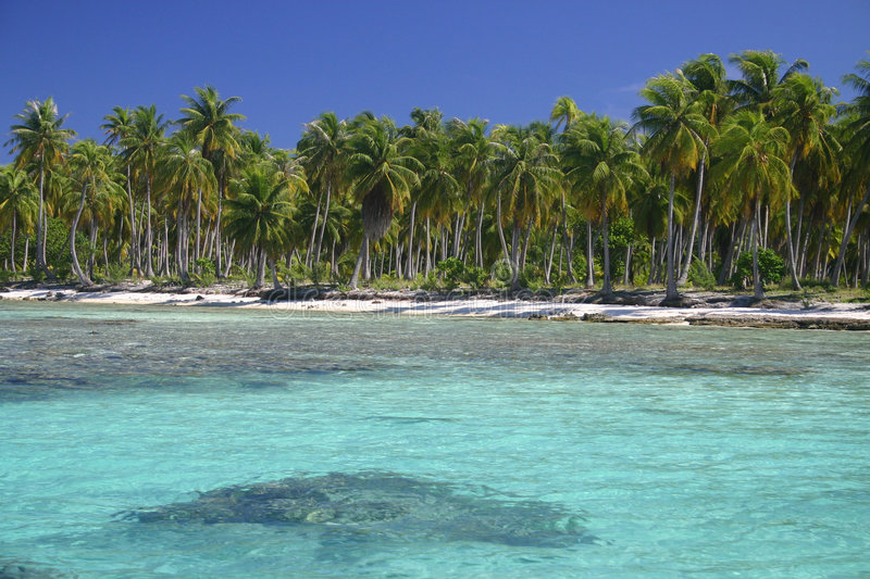 Atoll Rangiroa in French Polynesia. Secluded sandy beach on famous travel destination Atoll Rangiroa. French Polynesia stock photo