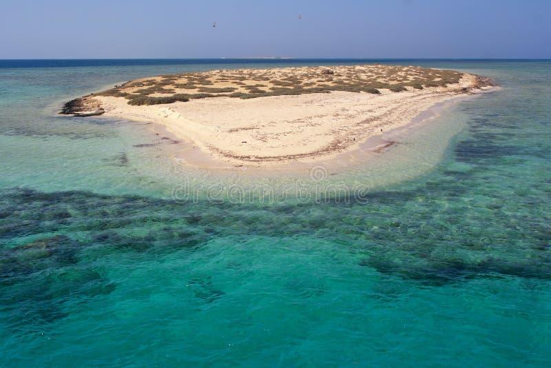 Atollo di paradiso delle isole di Qulaan nel Mar Rosso dell'Egitto fotografia stock libera da diritti