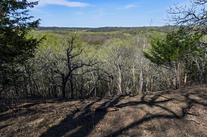 Atop Bluffs Overlooking Forests at Flandrau State Park. Atop bluffs overlooking forests in spring at flandrau state park near new ulm minnesota royalty free stock images