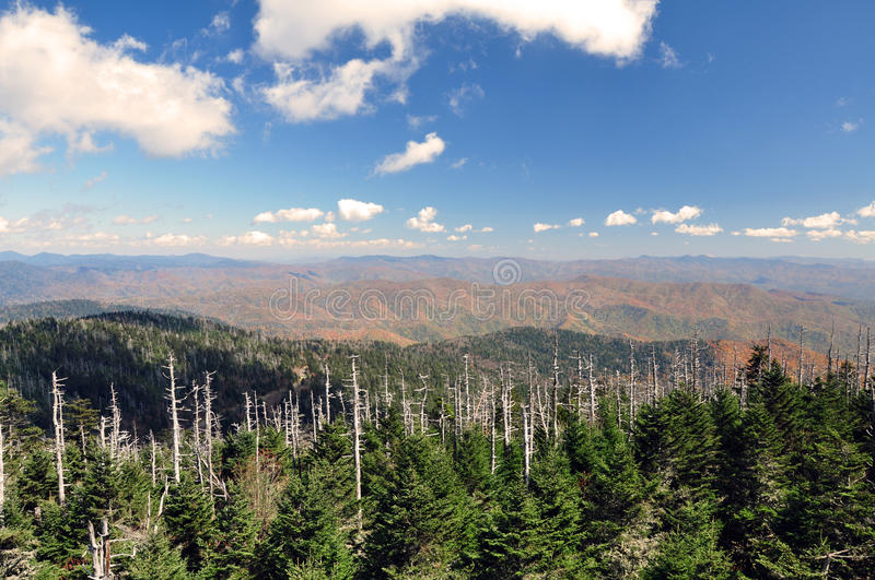 Download Atop Clingman's Dome stock image. Image of clouds, dome - 26504137