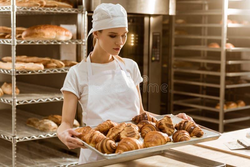 atrakcyjna żeńska piekarniana mienie taca z świeżymi croissants fotografia stock