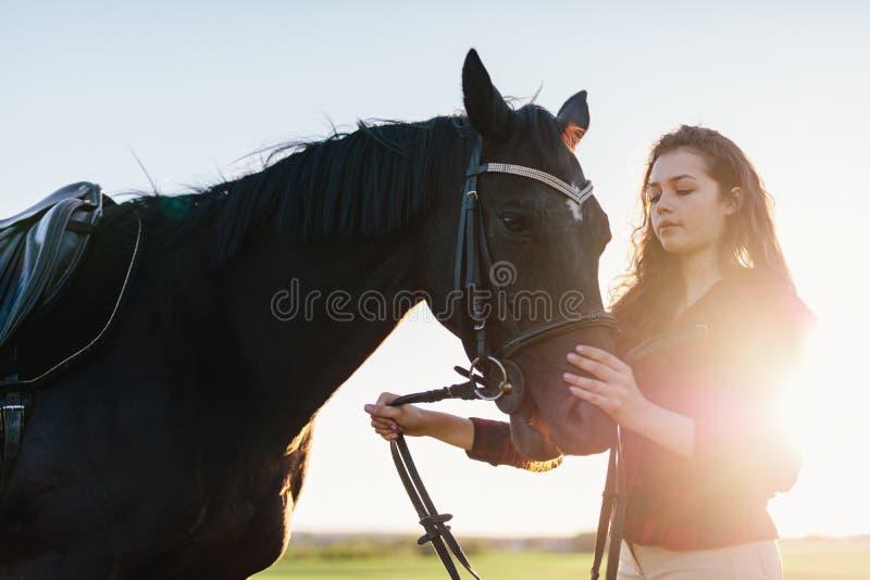 Atrakcyjna młoda kobieta trzyma ciemnego konia zdjęcie stock