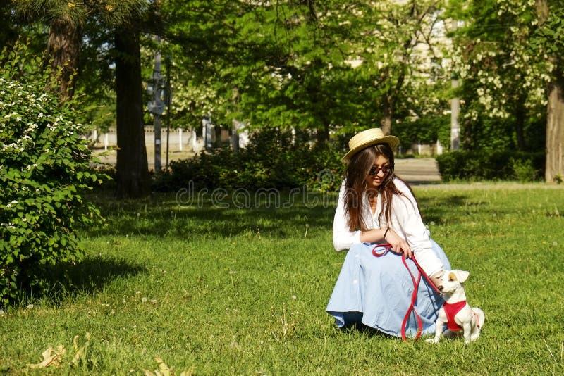 Atrakcyjna modniś młoda kobieta pójść dla spaceru w parku, bawić się z ślicznym dźwigarki Russell teriera szczeniakiem na jasnym  zdjęcia royalty free