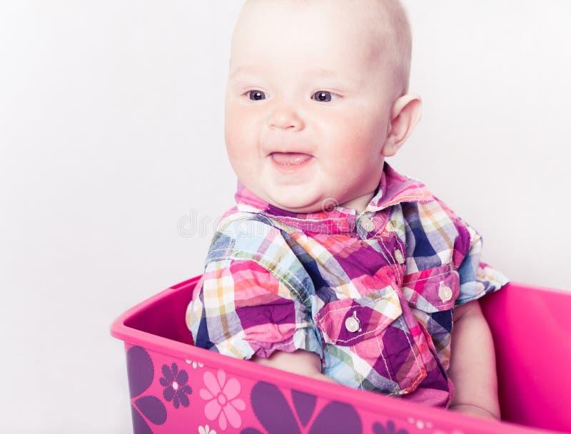 atrakcyjna niemowlęcia szkockiej kraty koszula obrazy stock