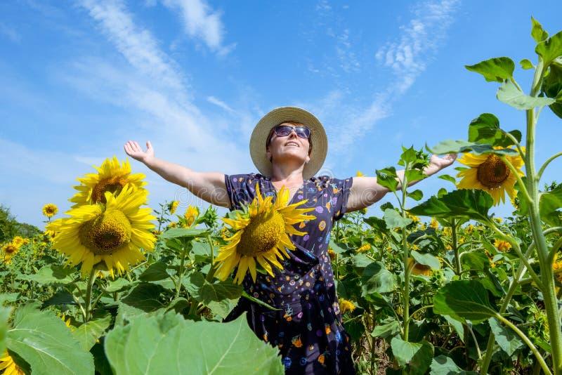 Atrakcyjna wiek średni kobieta w słomianym kapeluszu z rękami szeroko rozpościerać w słonecznika polu, świętuje wolność Pozytywny fotografia stock