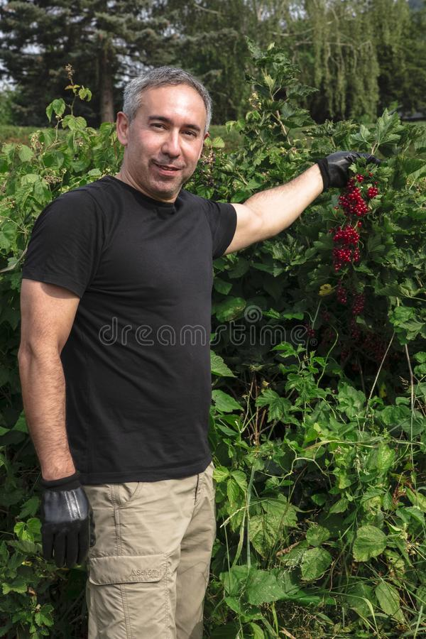 Atrakcyjni mężczyzna chwytów i uśmiechów czerwoni rodzynki zdjęcie royalty free