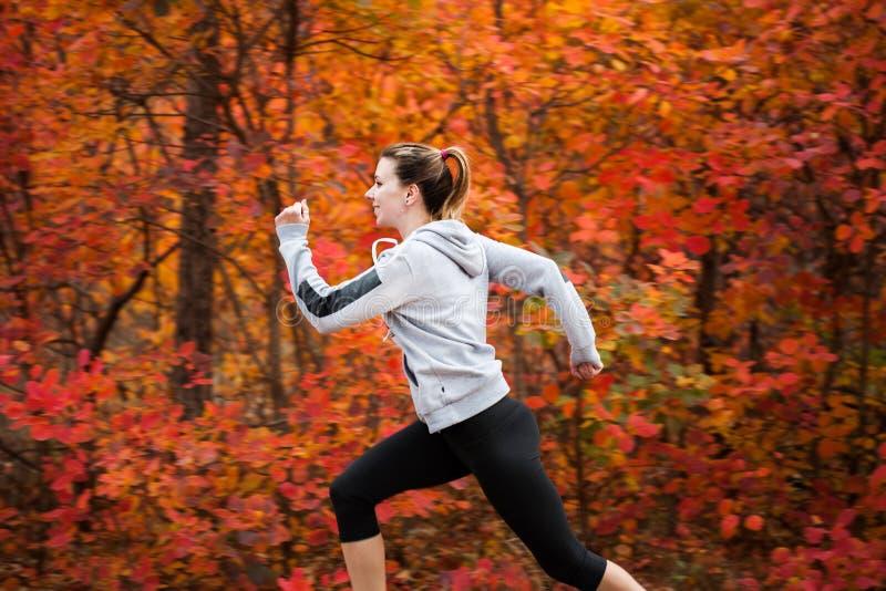 Atrakcyjny młoda kobieta bieg przez jesień lasu fotografia royalty free