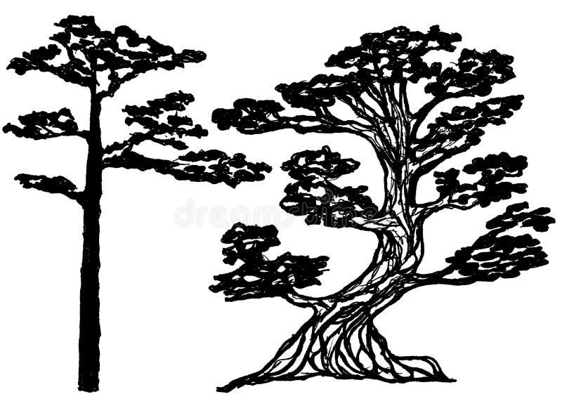 Atramentu conifer drzewa ilustracja wektor