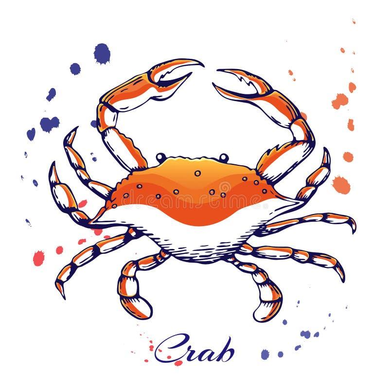 atramentu kraba ręka rysujący pojęcie dla dekoracji lub projekta Atrament spattered krab ilustracja wektorowej czerwieni gotowany royalty ilustracja