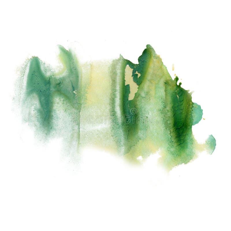 Atramentu splatter watercolour zieleni barwidła ciekłej akwareli punktu blotch makro- tekstura odizolowywająca na białym tle ilustracja wektor
