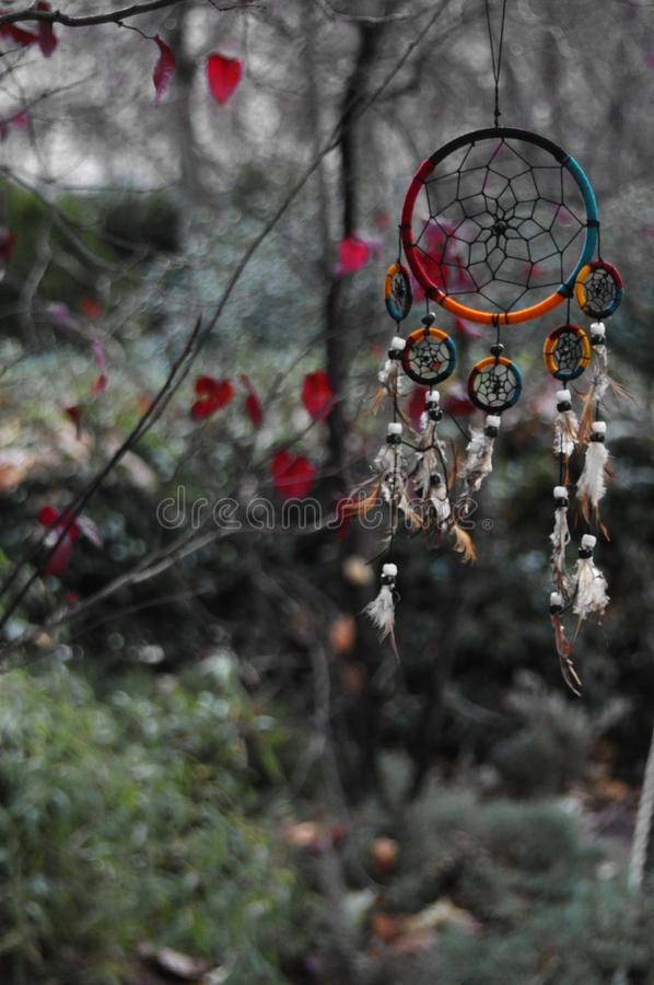 Dream catcher. Photograph of a very colorful dream catcher hanging on a tree also colorful, photography captured in Madrid stock images