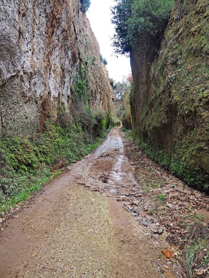 Através de oco, uma estrada antiga de Etruscan cinzelou através dos penhascos do tufo em Toscânia fotografia de stock royalty free