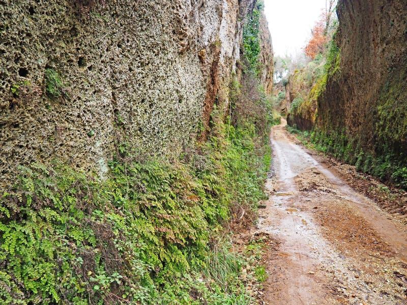 Através de oco, uma estrada antiga de Etruscan cinzelou através dos penhascos do tufo em Toscânia imagem de stock royalty free
