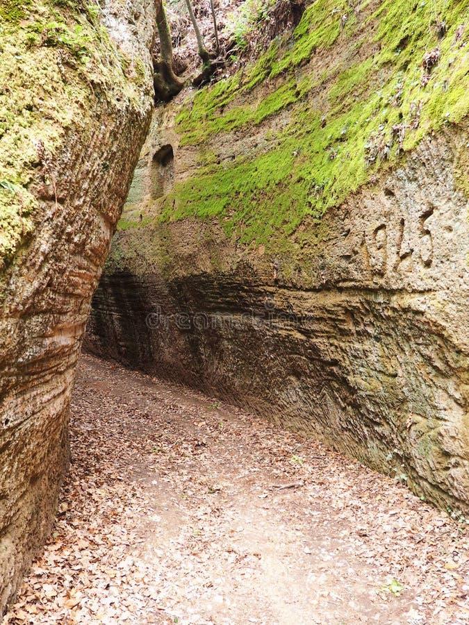 Através de oco, uma estrada antiga de Etruscan cinzelou através dos penhascos do tufo em Toscânia foto de stock royalty free