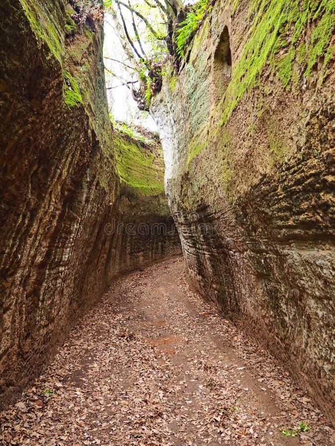 Através de oco, uma estrada antiga de Etruscan cinzelou através dos penhascos do tufo em Toscânia fotos de stock royalty free