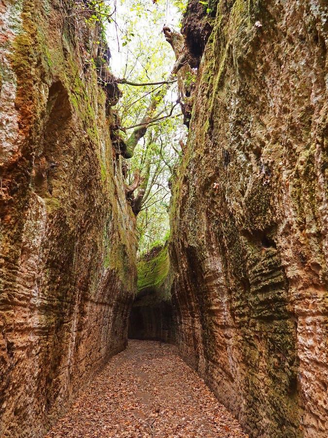 Através de oco, uma estrada antiga de Etruscan cinzelou através dos penhascos do tufo em Toscânia foto de stock