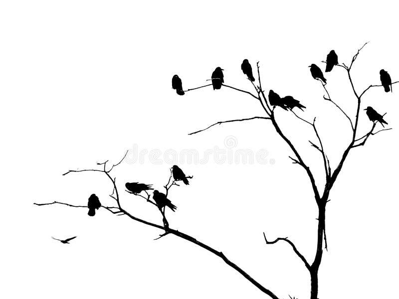 ¡Atrevimiento, usted puede volar! imagen de archivo libre de regalías