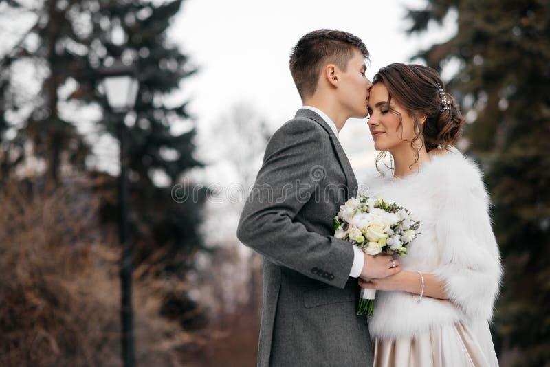 Att älska och den härliga bruden och brudgummen står in i vinterskogen arkivbilder
