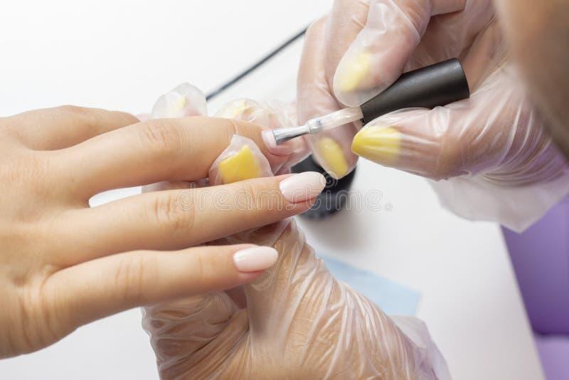 Att applicera stelnar polermedel på spikar shellac manikyristen gör manikyr i salong naturlig färgfernissa näck ton arkivfoto