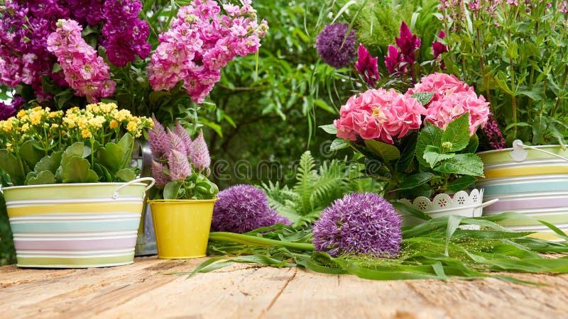 Att arbeta i trädgården bearbetar i trädgården fotografering för bildbyråer