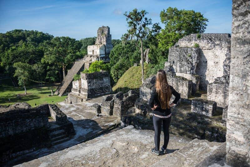 Att beskåda för ung flicka som är mayan, fördärvar på Tikal, nationalpark Tr royaltyfri fotografi