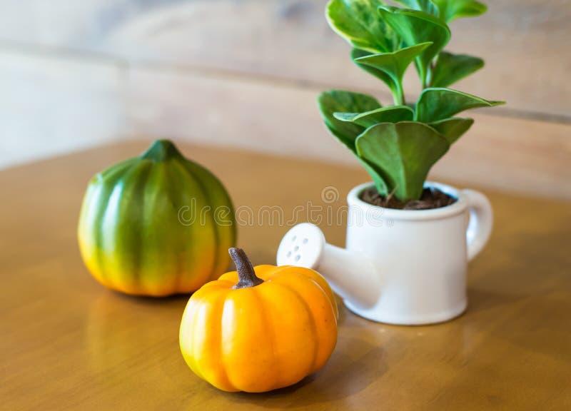 Att bevattna kan och växten över med plumkin arkivfoton