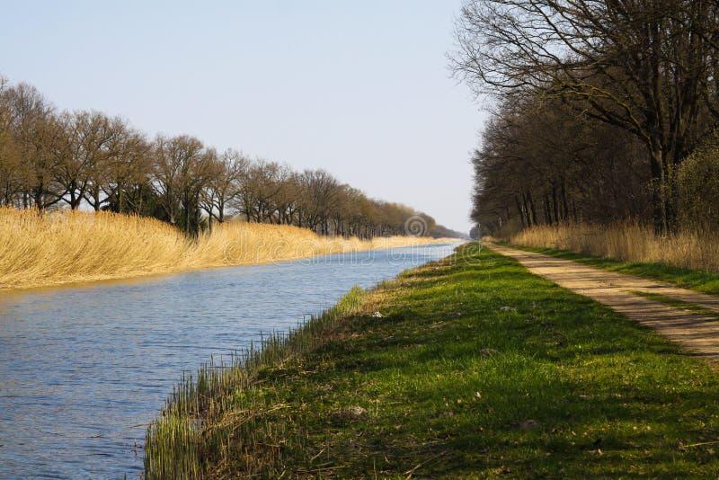 Att cykla turnerar längs den raka kanalen med vassen och kala träd på flodstranden i vår royaltyfri foto