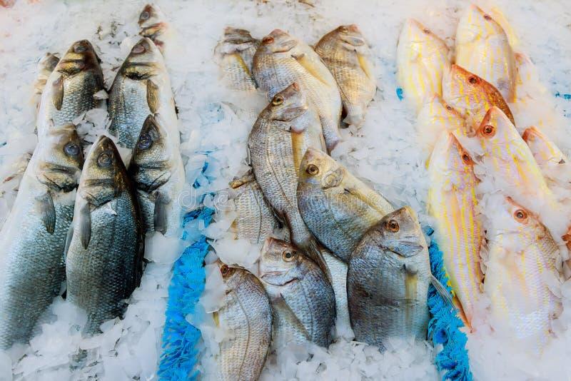 Att erbjuda av den nya fisken kylde med krossad is på en fiskeri, en fiskmarknad eller en supermarket på skärm för shoppare royaltyfri bild