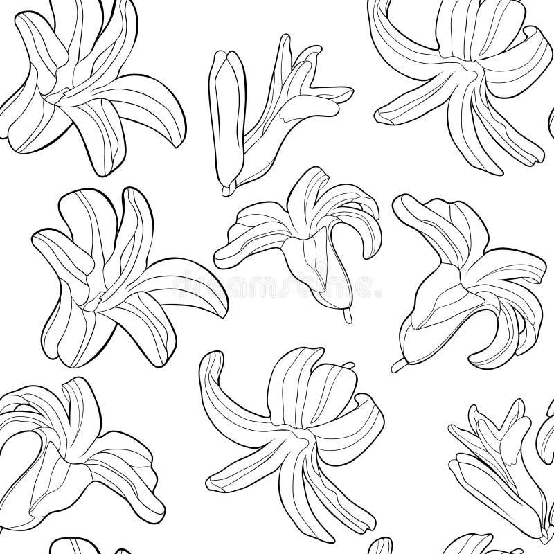 Att färga den sömlösa modellen är hyacintvårblomman Vektor il stock illustrationer