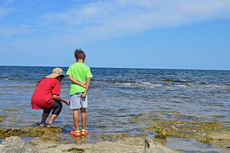 Att fånga krabbor i vaggar fotografering för bildbyråer
