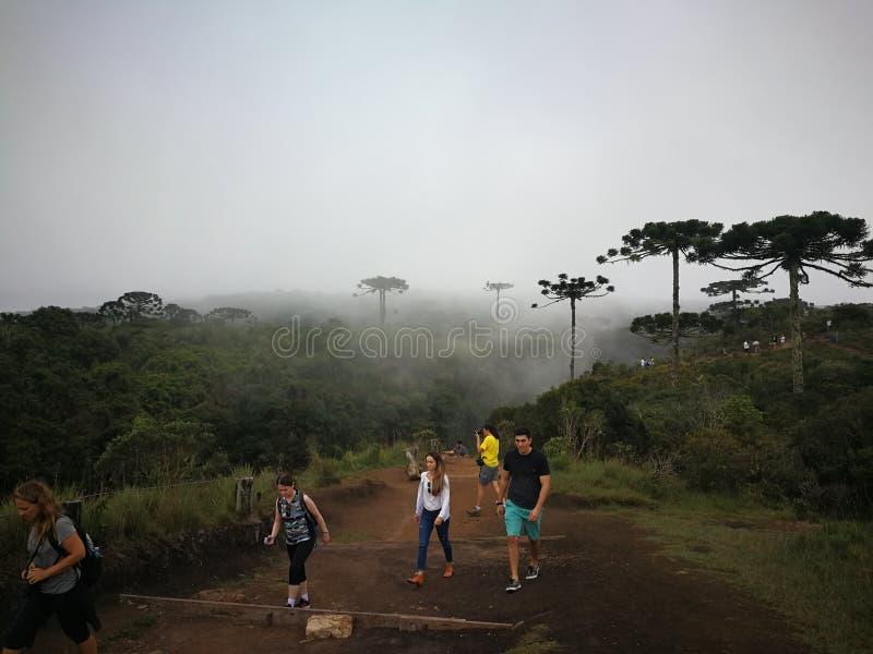 Att fotvandra i nationalparken av Aparados gör Serra arkivfoto