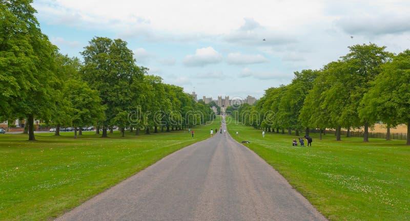 Att gå för den Windsor The Long Walk gränden parkerar arkivfoton