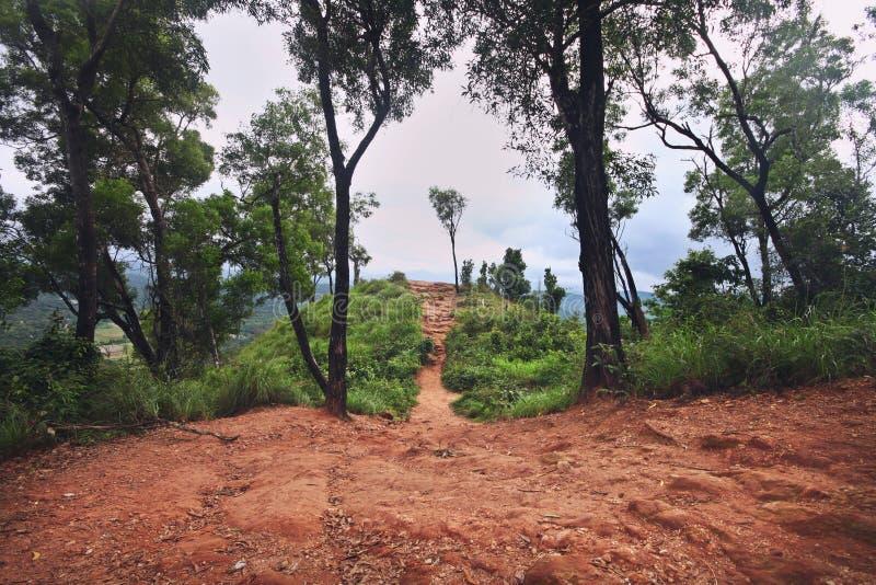Att gå slingan i de västra ghatsna spänner, Indien royaltyfri bild