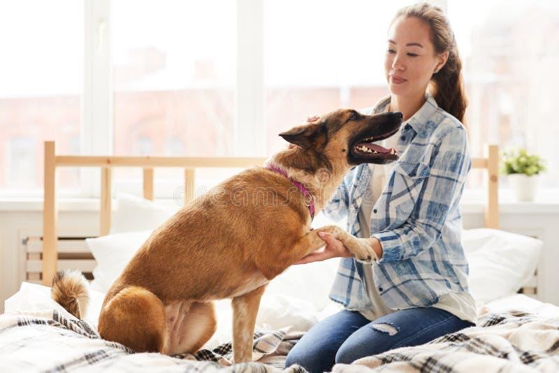 Att ge sig för husdjur tafsar till den unga kvinnan fotografering för bildbyråer