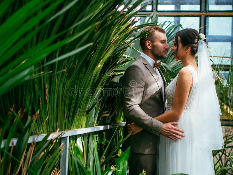 Att gifta sig par inomhus är att krama sig Härlig modellflicka i den vita klänningen Manen passar in Skönhetbrud med brudgummen royaltyfri bild