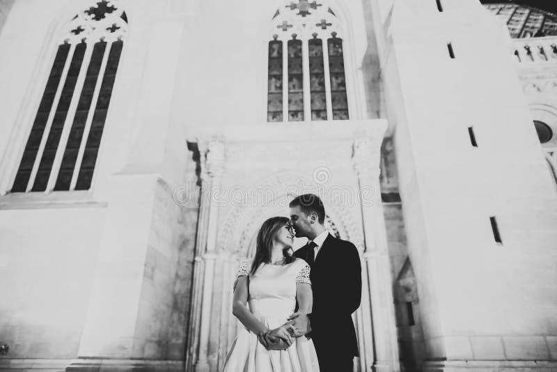 Att gifta sig par på naturen är att krama sig Härlig modellflicka i den vita klänningen Manen passar in arkivbilder