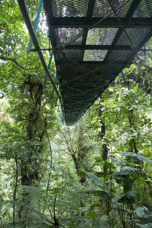 Att hänga överbryggar Costa Rica arkivbilder