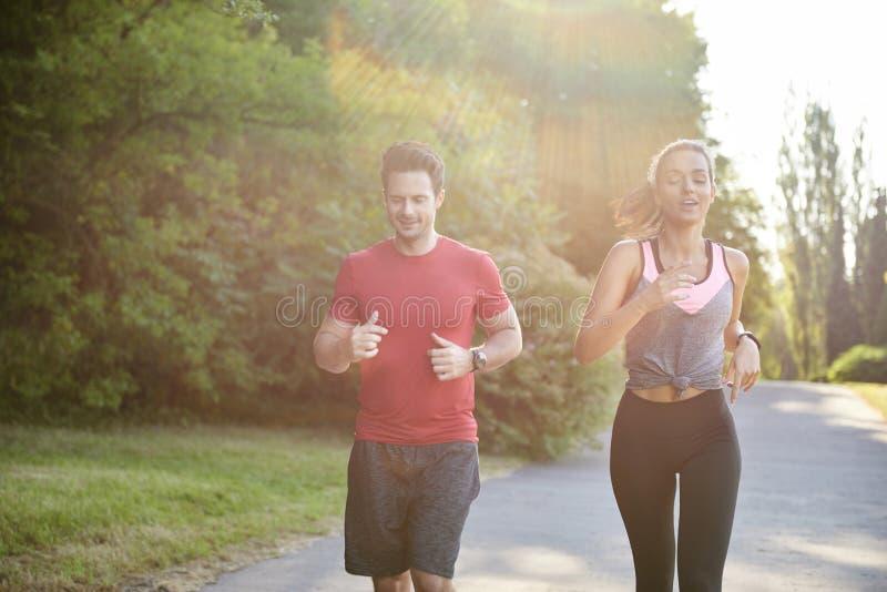 Att ha en partner att göra spring är lättare arkivbilder