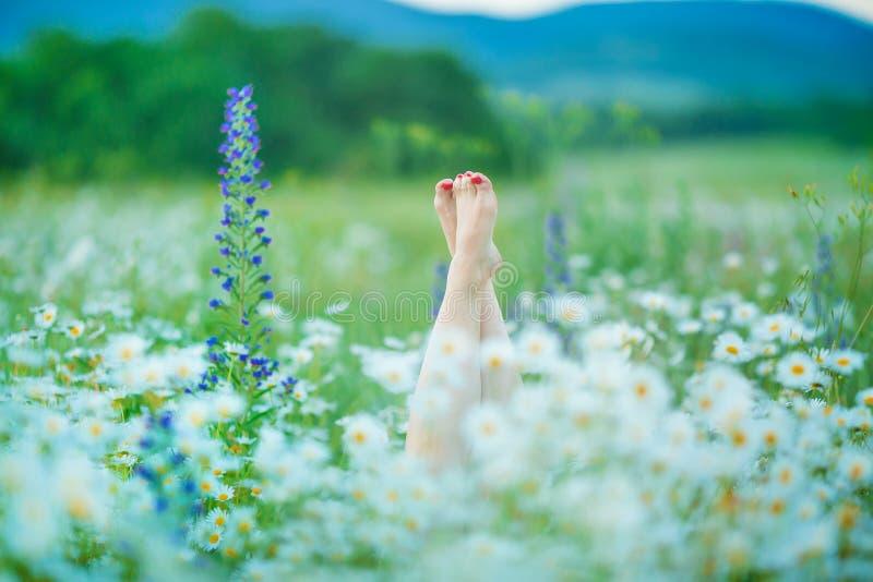 Att koppla av i naturkvinnan lägger benen på ryggen mellan blommabrunnsorten royaltyfri bild