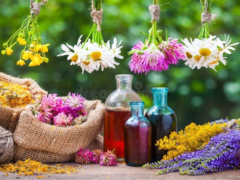 Att läka örtgrupper, flaskan av tinktur, hänger löst med torkade växter royaltyfria foton