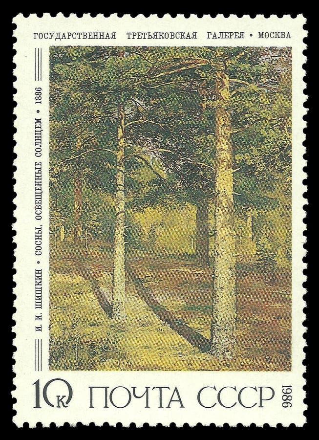 Att måla som är solbelyst, sörjer träd arkivfoton