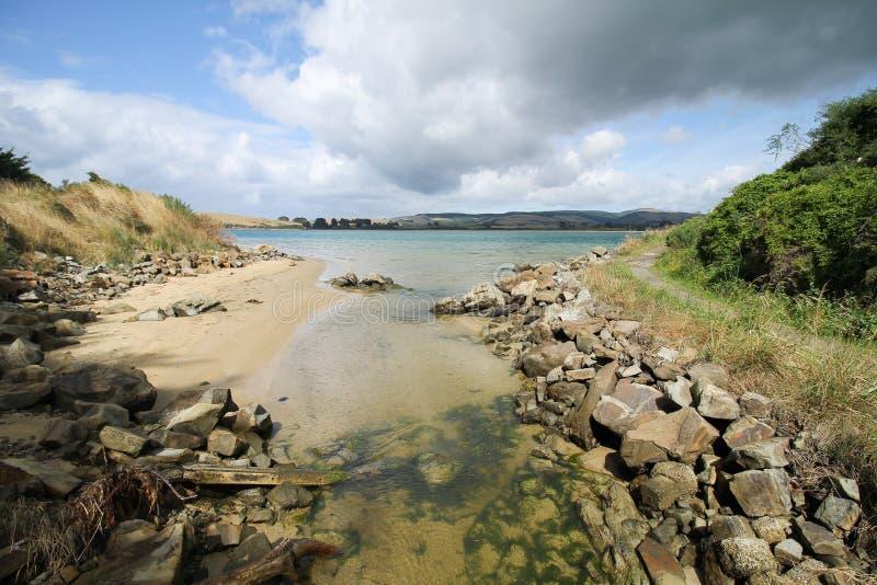 Att se till den Catlins floden ger den trevliga naturen royaltyfria foton