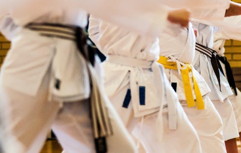 Att utföra för karatestudenter som är grundläggande, borrar royaltyfria foton