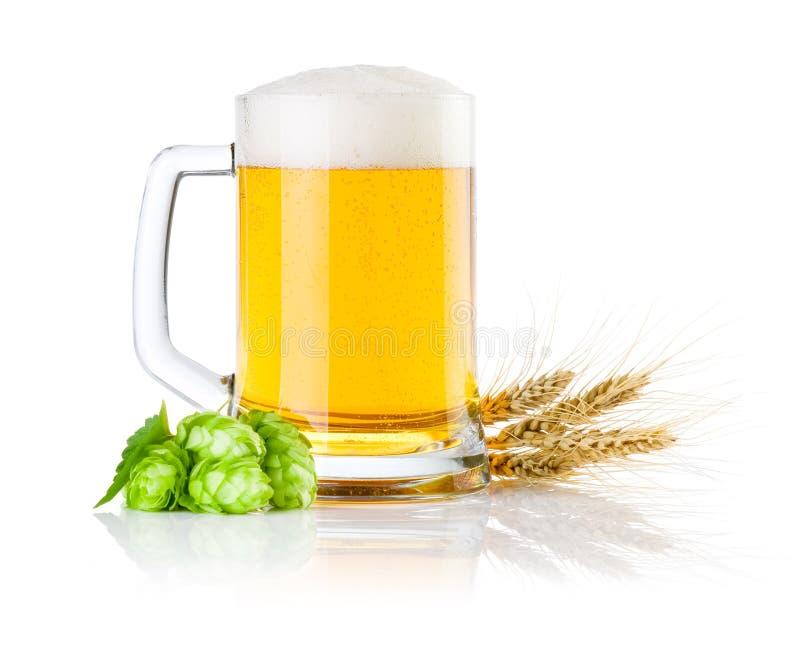 Attacchi la birra con i luppoli e le orecchie verdi di orzo immagini stock libere da diritti