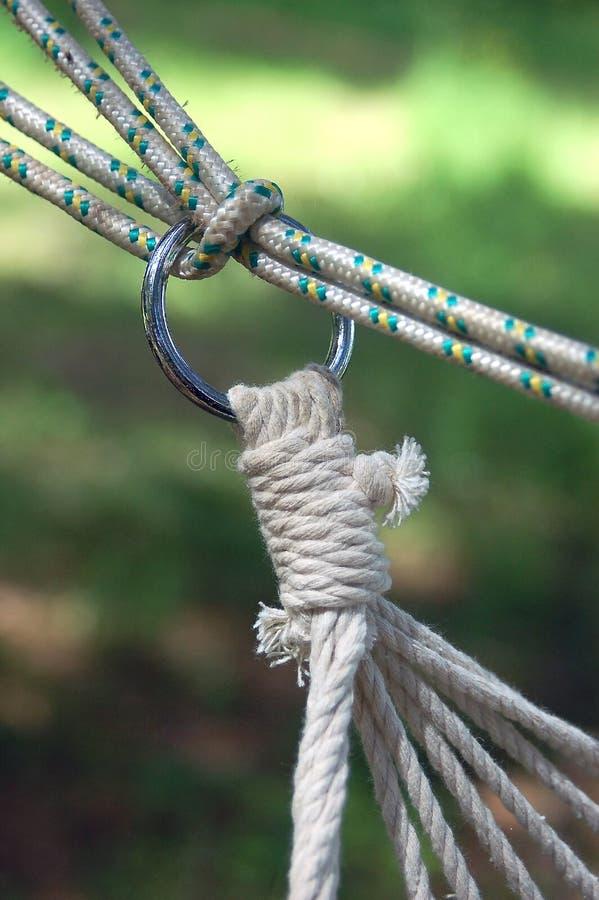 Attachement d'une corde d'hamac ? un arbre photo libre de droits