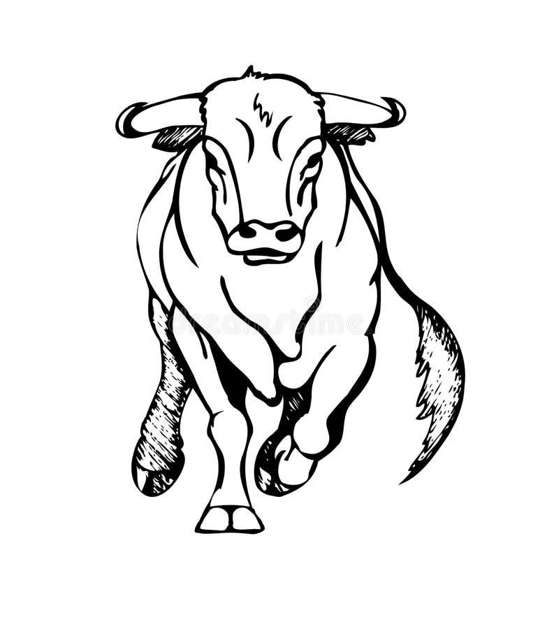 Attaques de Taureau illustration stock