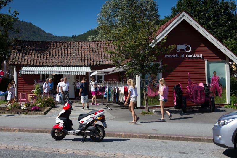 Atteggiamenti della Norvegia fotografia stock