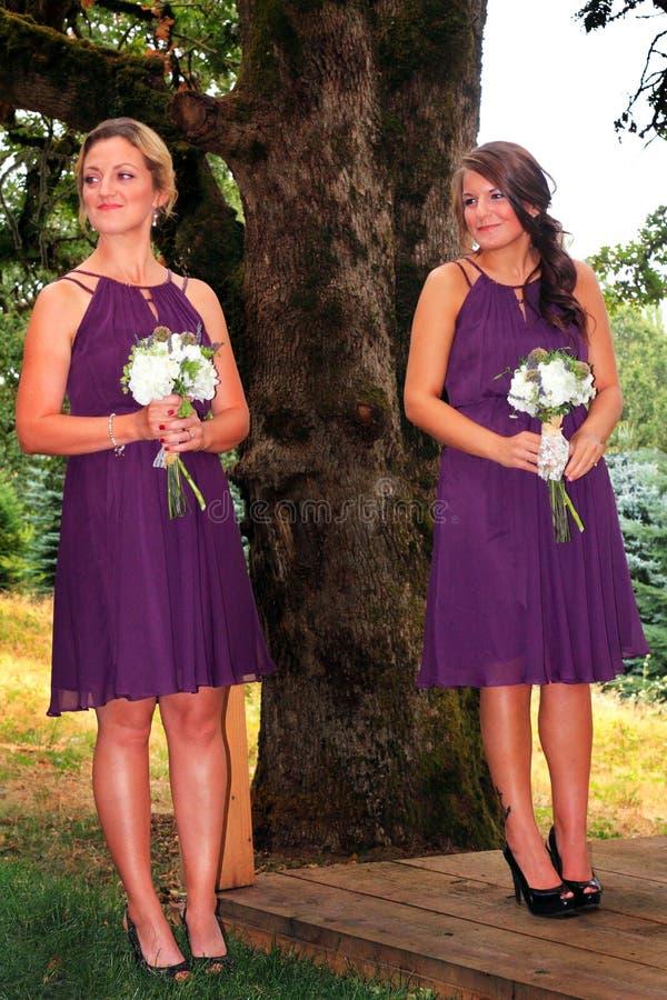 Attente de la jeune mariée photographie stock