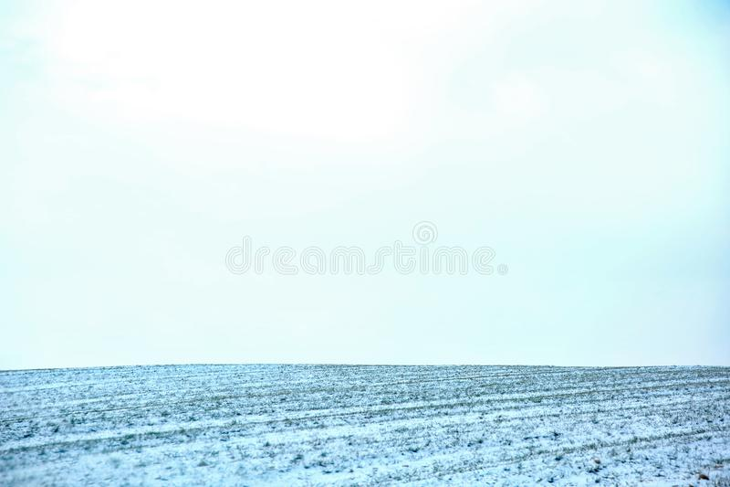 Atterri in un settore coltivato coperto di neve bianca dell'inverno con nessuna parte lasciata con le zolle nude del pretendin de fotografia stock libera da diritti