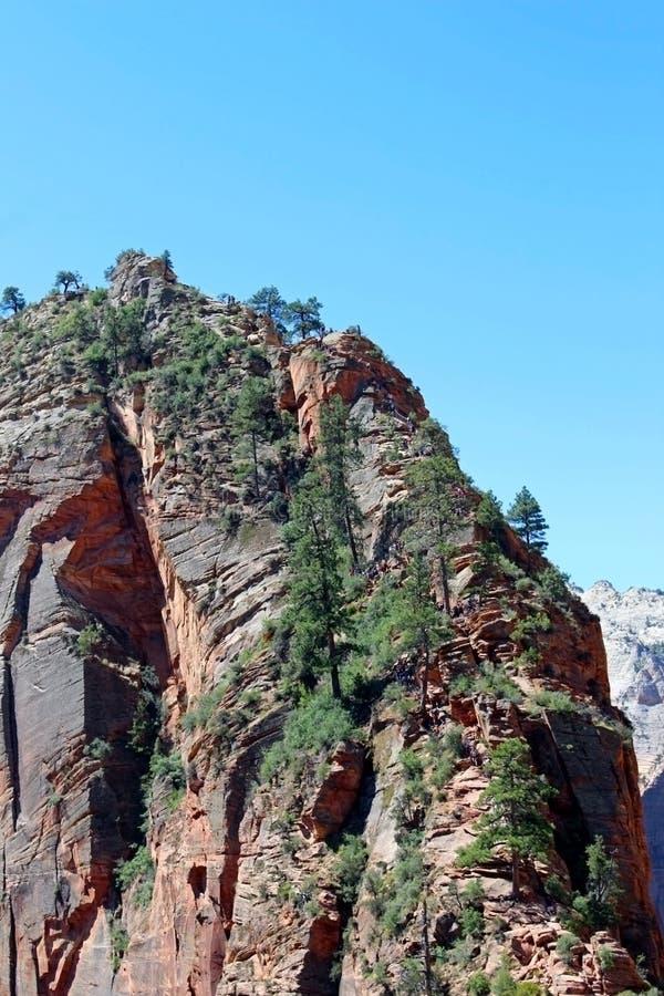 Atterrissage du ` s d'ange, Zion National Park photographie stock